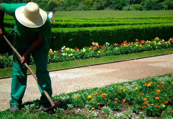 jardineiro-joinville